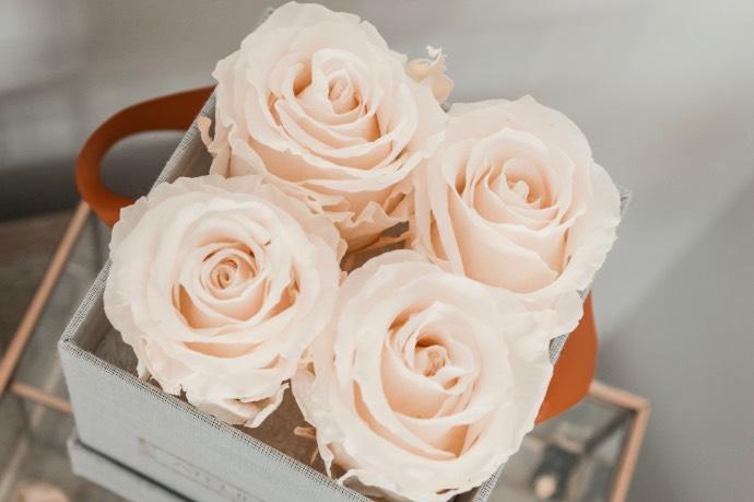 Avis Atelier 19 bouquet de roses éternelles préservées - Blog Mangue Poudrée, Blog beauté mode et lifestyle à Reims - Blogueuse Instagrammeuse - 05