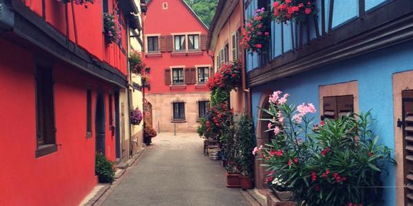 7 activités incontournables à découvrir en Alsace