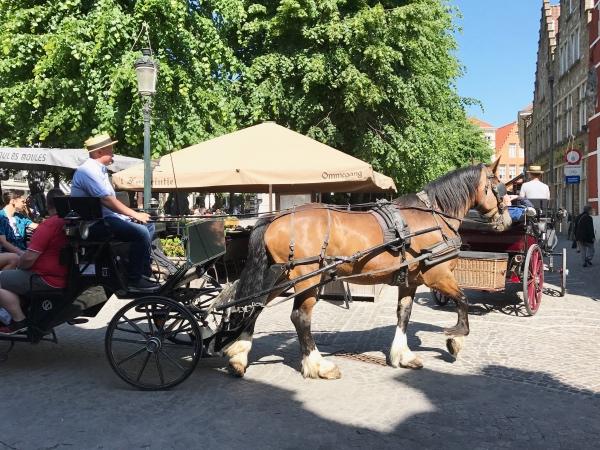 Bruges City Break Balade en calèche