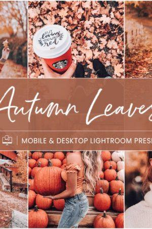 preset instagram autumn leaves