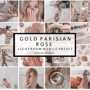 preset lightroom gol parisian rose