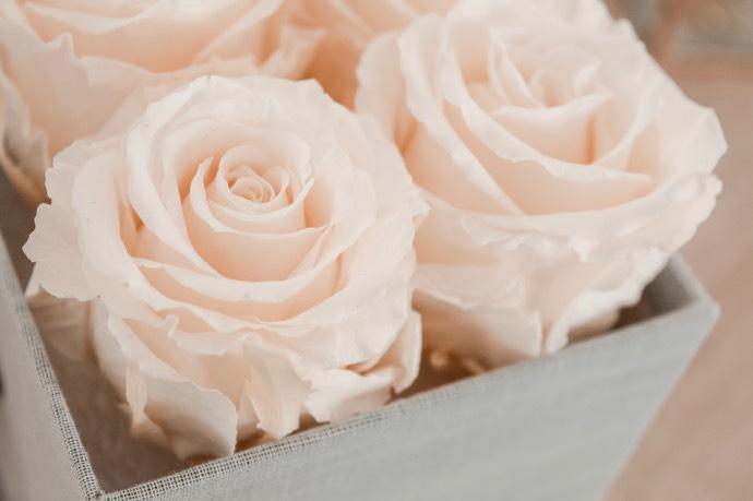 Avis Atelier 19 bouquet de roses éternelles préservées - Blog Mangue Poudrée, Blog beauté mode et lifestyle à Reims - Blogueuse Instagrammeuse - 02